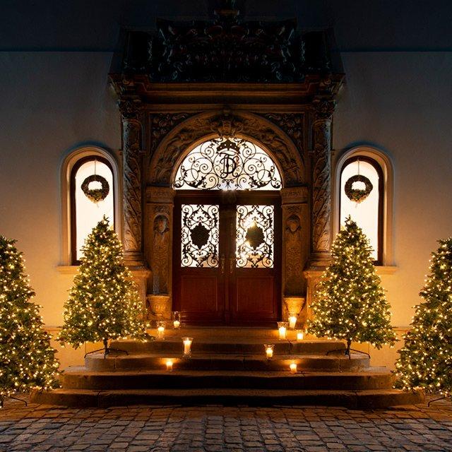 Choinki i świąteczne oświetlenie